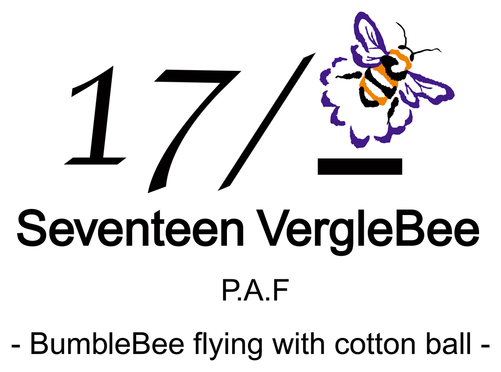 17-VergleBeeブランド紹介 | オリジナルTシャツプリントなら【SEABOW】
