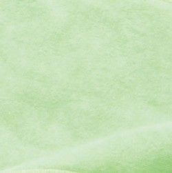 024 ライトグリーン