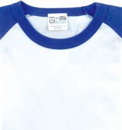 05 ロイヤルブルー