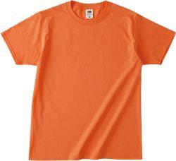 10 テネシーオレンジ